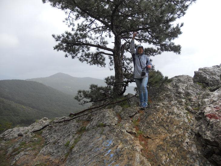 На Вороньей скале