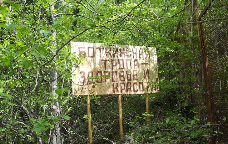 Боткинская тропа - здоровье и красота